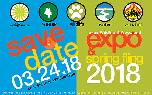 Texas Wildlife & Woodland Expo postcard