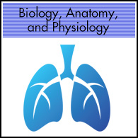Biology, Anatomy, Physiology