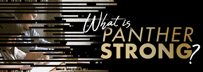 What is Panther Strong Decorative Banner