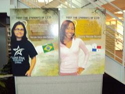 CCI Program