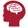 Brain in head icon