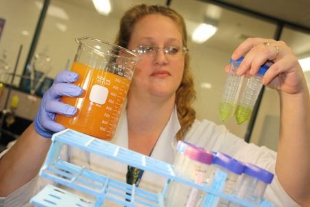 In just months, Michelle Coleman, an LSC-Montgomery graduate who now volunteers in the Biotechnology Institute, has seen results in the quest to remediate the brackish aquifer water (on left) using various strains of algae (on right).